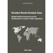 Divided World, Divided Class: Global Political Economy and the Stratification of Labour Under Capitalism, Paperback