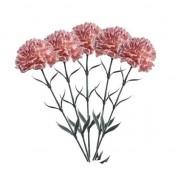 Geen 5 stuks perzik kleurige Dianthus kunstbloemen op steel 65 cm