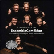 Video Delta Ensemblecameleon - Young Hearts On Fire-Korngold/Rossini/Mendelssohn - CD