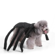 Pet Clothes Christmas Halloween Scared Black Widow Spider Harness Dog Costume