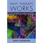 Why Therapy Works by Louis Cozolino