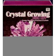 Amethyst Purple Crystal Growing Box Kit