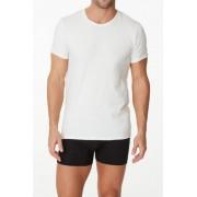 Parker & Max Classic Cotton Stretch Crew Neck Short Sleeved T Shirt White PMFPCS-TCN1