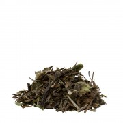 Organic White Tea Pai Mu Tan