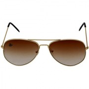 Abloom Golden frame 2ton Chocolaty Glass Aviator Sunglass