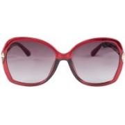 Erminio Palamino Over-sized Sunglasses(Brown)