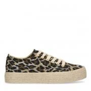 Sacha Canvas platform sneakers met panterprint