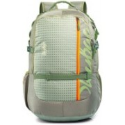 Skybags 17 inch Laptop Backpack(Green)