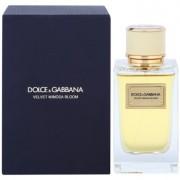 Dolce & Gabbana Velvet Mimosa Bloom eau de parfum para mujer 150 ml
