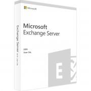 Microsoft Exchange Server 2019 Standard 1 utente CAL