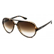 Ray-Ban RB4125 Cats 5000 Sunglasses 710/51