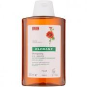 Klorane Nasturtium champú contra la caspa seca 200 ml