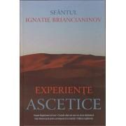 Experiente ascetice/Sfantul Ignatie Briancianinov