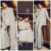 Heavy Embroidered Pakistani Net Designer Suits Pakistani Net Designer Suits in India