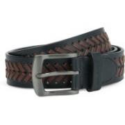 Tommy Hilfiger Men Casual Brown, Blue Genuine Leather Belt