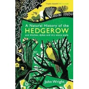 Natural History of the Hedgerow, Paperback