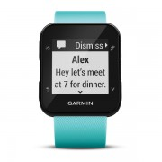 Smartwatch Garmin Forerunner 35, Frost Blue