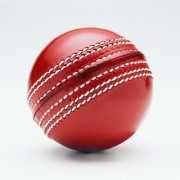 Shopperchoice Cricket Leather Ball - Pack Of 1