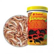 Tropical Gammarus 600ml