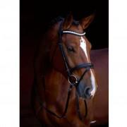 Kerbl Briglie a Morso Shine-On in Pelle per Pony 323555