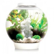 BiOrb Classic aquarium 60 liter LED Tropical wit