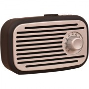 DOITSHOP G32 S Wireless Bluetooth Speaker Playing with Mobile/Tablet/Laptop/Memory Card/Pen Drive (Random Color)