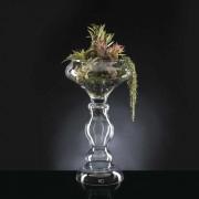 Aranjament floral ETERNITY BOWL EXOTIC ZEUS