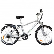 Bicicleta Electrica EcoMobile 500W 48V Power Plus Aluminio Plata