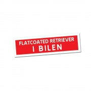 Flatcoated Retriever i Bilen Klisterdekal