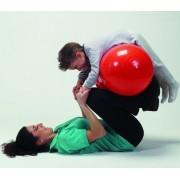 Physio-Roll 40 X 65 cm piros dupla-labda, fiziohenger (PIROS)