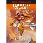 Dungeons & Dragons: Big Trouble: An Endless Quest Book, Hardcover/Matt Forbeck