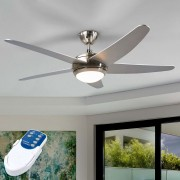 Anneka silver ceiling fan with light