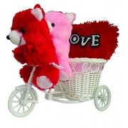 ME&You Romantic Cycle Teddy Return Gifts for Wife Girlfriend Sister On Birthday, Anniversary, Rakhi, Valentine's Day IZ18TCy-002