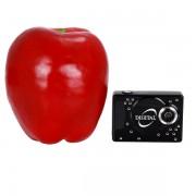 Микро размерна,лека мини DV камера