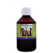 Basugandar Taila - 250 ml