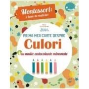 Montessori o lume de realizari. Prima mea carte despre culori