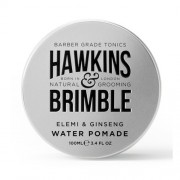 Hawkins & Brimble Pomadă pentru păr pe bază de apă cu parfum de elemi si ginseng (Elemi & Ginseng Water Pomade) 100 ml