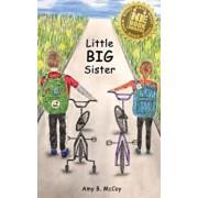 Little Big Sister, Paperback/Amy B. McCoy