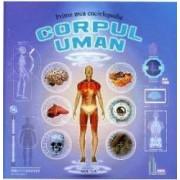 Prima mea enciclopedie corpul uman