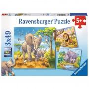 Ravensburger puzzle 3x49 pezzi i grandi animali della savana 08003