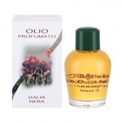 Frais Monde Black Dahlia olio profumato 12 ml donna