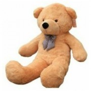 Anand Collection Teddy Bear 2 Feet