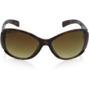 Fastrack Butterfly Sunglasses(Brown)