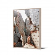 Pôdevache Velayos - Toile imprimée cactus 92,5x65cm - Couleur - Multicolore