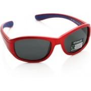 Polaroid Oval Sunglasses(For Boys & Girls)