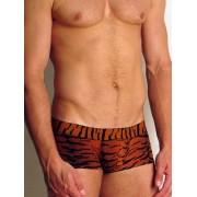 Doreanse Мужские трусы-хипсы «Doreanse Wild» тигровые 1820c01