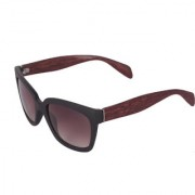 Ivy Vacker Brown Wayfarer Wooden Sunglass for Men