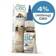 Cibdol Huile de CBD 4% pour chiens (Cibapet)