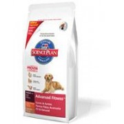 Hill'S Canine Adult Large Lamb & Rice Kg.12 (Cani Adulti Agnello E Riso)