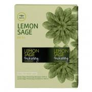 Mitchell Paul Mitchell Tea Tree Lemon Sage Gift Set Duo